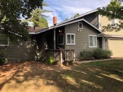 8805 Sunnybrook Lane, Fair Oaks, CA 95628 - #: 19072318