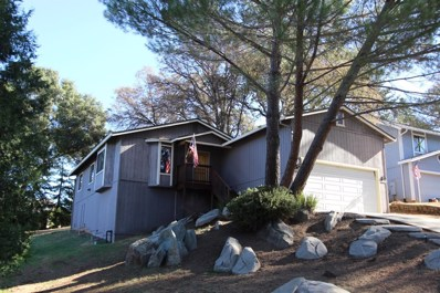 25107 Oro Valley Road, Auburn, CA 95602 - #: 19073012