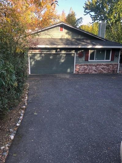 13611 Torrey Pines Drive, Auburn, CA 95602 - #: 19073413