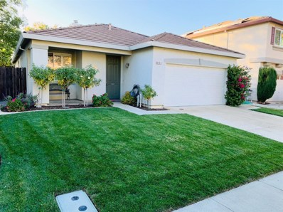 908 Ross Drive, Woodland, CA 95776 - #: 19075439