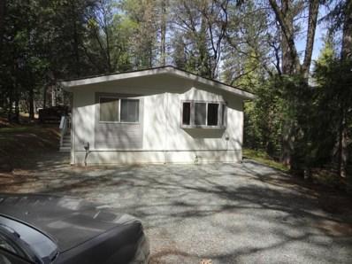23750 Carson Drive UNIT 6, Pioneer, CA 95666 - #: 19077148