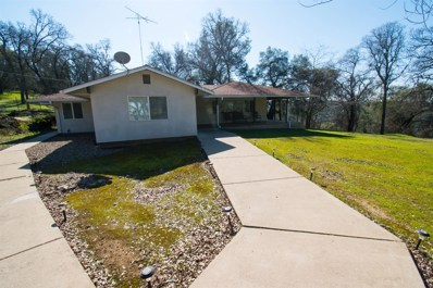 4640 Montaire Drive, Shingle Springs, CA 95682 - #: 19077650