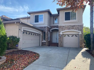 401 Connor Circle, Sacramento, CA 95835 - #: 19078809