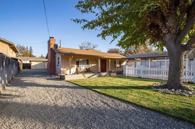 234 Freeman Street, Woodland, CA 95695 - #: 19079062