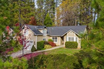 262 Scotia Pines Circle, Grass Valley, CA 95945 - #: 19079318