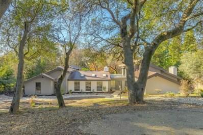4219 Buchanan Drive, Fair Oaks, CA 95628 - #: 19082148