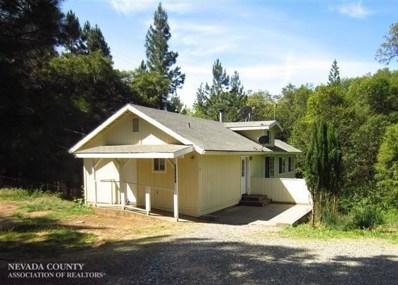 11543 Brookview Drive, Grass Valley, CA 95945 - #: 19600963