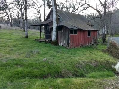 12070 Palomino, Grass Valley, CA 95949 - #: 20001267