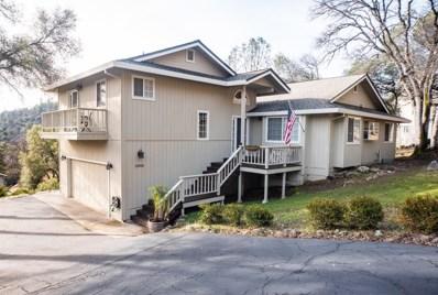 13818 Hemlock Drive, Penn Valley, CA 95946 - #: 20001318