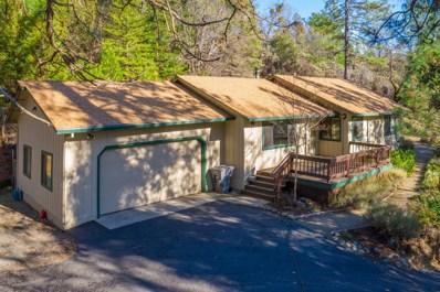 20977 Birchwood Drive, Foresthill, CA 95631 - #: 20003338