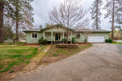10189 Lime Kiln Rd, Grass Valley, CA 95949 - #: 20003926