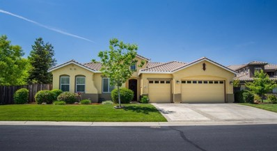 33397 Canvas Back Street, Woodland, CA 95695 - #: 20003947