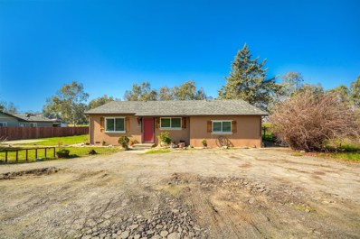 18888 Possum Lane, Woodland, CA 95695 - #: 20004104