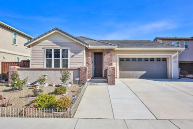 1905 Henry Court, Woodland, CA 95776 - #: 20006536