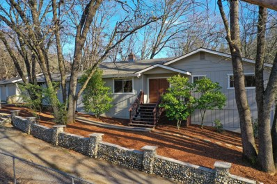 17036 Bissell Place, Grass Valley, CA 95949 - #: 20006589