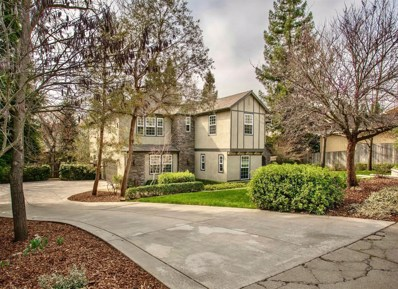 8050 Withrow Court, Fair Oaks, CA 95628 - #: 20008779