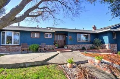 8768 Tondella Way, Fair Oaks, CA 95628 - #: 20009998