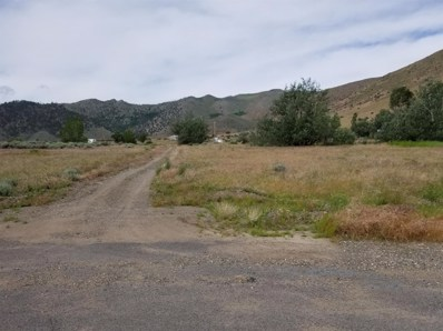 741 Cowboy Joe Road, Other, CA 96109 - #: 20019189