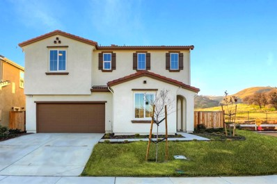 21051 Pinot Noir Drive, Patterson, CA 95363 - #: 20022463