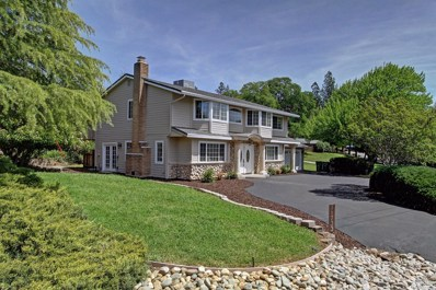 11733 Lavender Court, Auburn, CA 95602 - #: 20024033