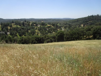 19711 Peyton Place, Grass Valley, CA 95949 - #: 20026405