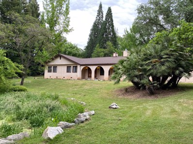 23499 Gold Springs Drive, Columbia, CA 95310 - #: 20027109