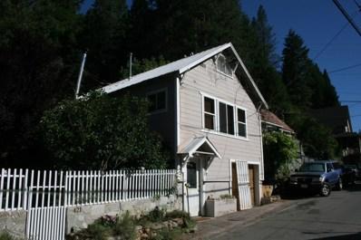 425 Main Street, Downieville, CA 95936 - #: 20029321
