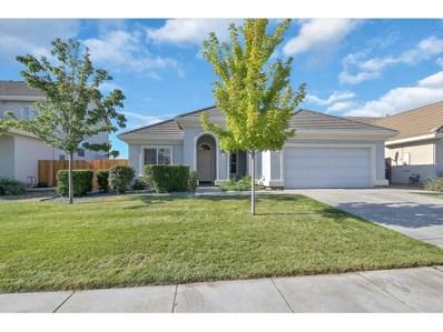 931 Sierra Oaks Drive, Williams, CA 95987 - #: 20041889