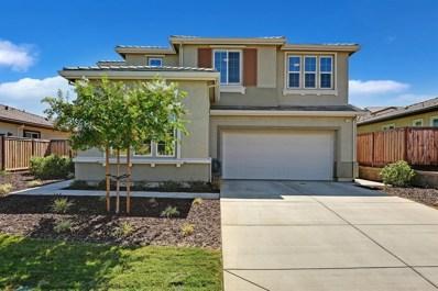 21224 Grapevine Drive, Patterson, CA 95363 - #: 20057723