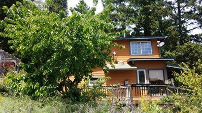 5500 Rancho Sequoia Drive, Alderpoint, CA 95511 - #: 221007450