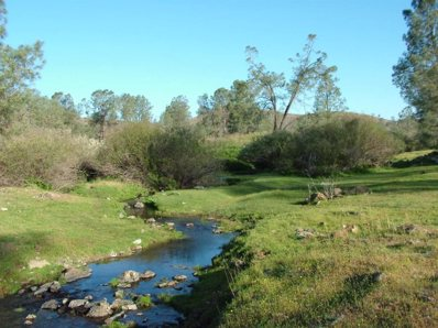 0 Red Hills Road, Chinese Camp, CA 95309 - #: 221014631