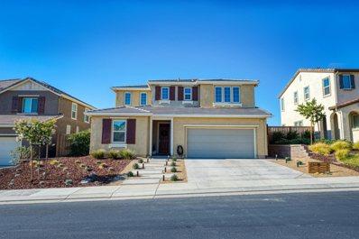21236 Grapevine Drive, Patterson, CA 95363 - #: 221079562