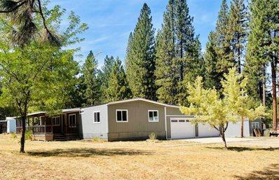 90 Easy Street, Meadow Valley, CA 95956 - #: 221096271