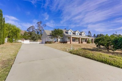 1021 Capra Way, Fallbrook, CA 92028 - #: 190063595