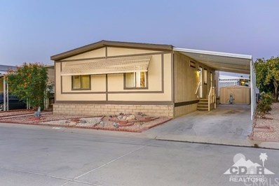 46618 Madison Street UNIT 145, Indio, CA 92201 - #: 217026114DA