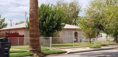 491 Palm Drive, Blythe, CA 92225 - #: 219021831DA