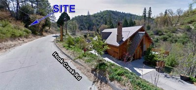 30054 Hook Creek Road, Cedar Glen, CA 92321 - #: 470232