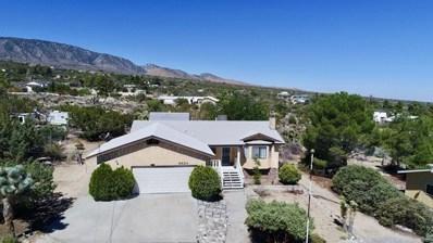 9824 Mountain Road, Pinon Hills, CA 92372 - #: 501589