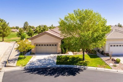 11195 Avonlea Road, Apple Valley, CA 92308 - #: 504245