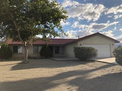 4121 Cholame Road, Phelan, CA 92371 - #: 504843