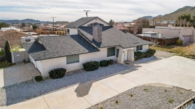 16304 Sago Road, Apple Valley, CA 92307 - #: CV19051942