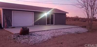 11471 Del Rosa Road, Phelan, CA 92371 - #: CV20003693