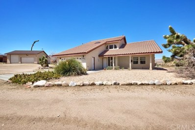 5594 Bronco Road, Pioneertown, CA 92252 - #: JT18238500
