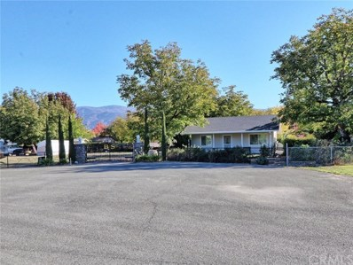 10030 Hagemann Lane, Upper Lake, CA 95485 - #: LC18258642