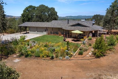 6765 S State Hwy 29, Kelseyville, CA 95451 - #: LC20157455