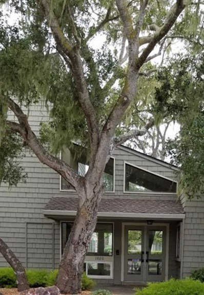 804 Redwood Lane UNIT 804, Pacific Grove, CA 93950 - #: ML81722754