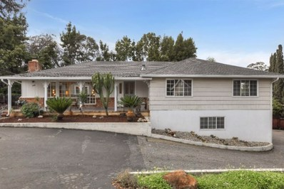 143 Cerrito Avenue, Redwood City, CA 94061 - #: ML81738394