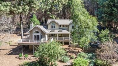 420 Conifer Lane, Santa Cruz, CA 95060 - #: ML81852219