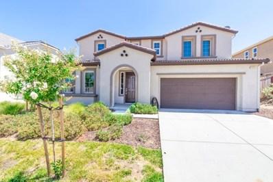 21252 Grapevine Drive, Patterson, CA 95363 - #: ML81855118
