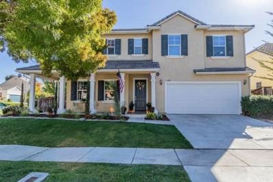 250 Silver Oak Drive, Paso Robles, CA 93446 - #: NS18263240